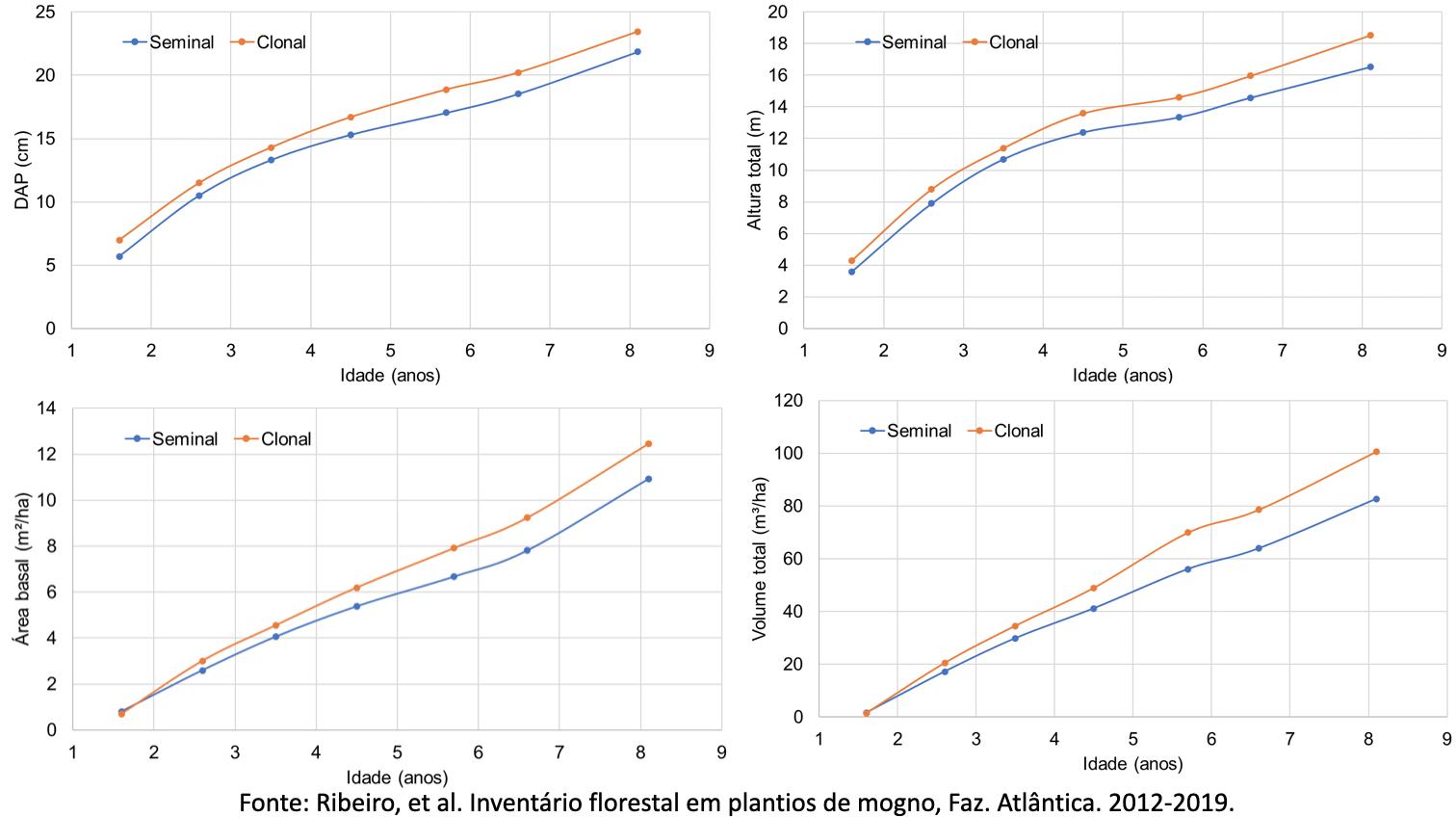 comparativo de mudas clonais e seminais