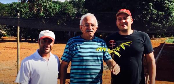 Professor Falesi com uma muda de mogno africano em visita ao Viveiro Origem